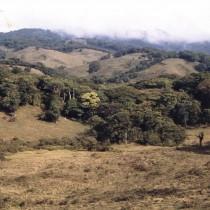 Die Berge von Los Alpes vor der Wiederbewaldung 1992
